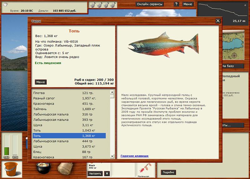 русская рыбалка 4 карта клева комариное